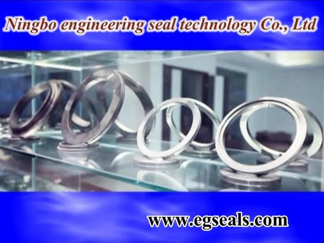 pressureless sintered silicon carbide seal rings thumbnail image