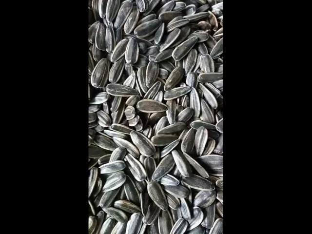 black sunflower seeds in shell thumbnail image