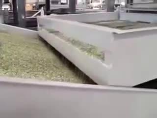 Hemp Seed Shelling Machine thumbnail image