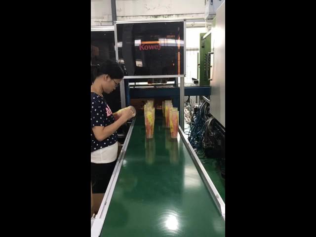 kowey side entry IML robot