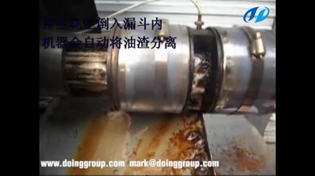 Automatic oil press supply by Henan Doing Company thumbnail image