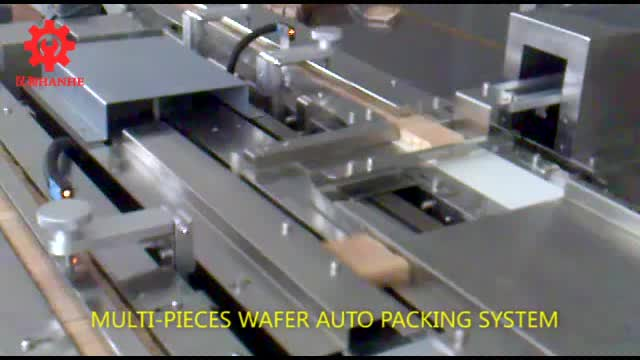 Wafer auto packing system thumbnail image