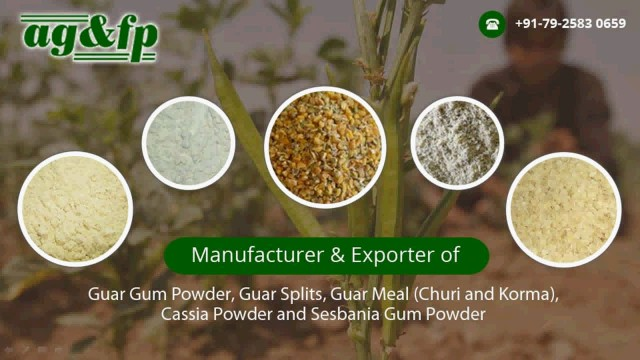 Applications of Guar Gum & Cassia Gum Derivatives thumbnail image