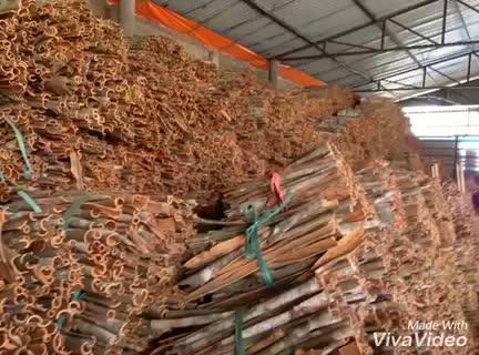 Vietnam Cassia/ Cinnamon