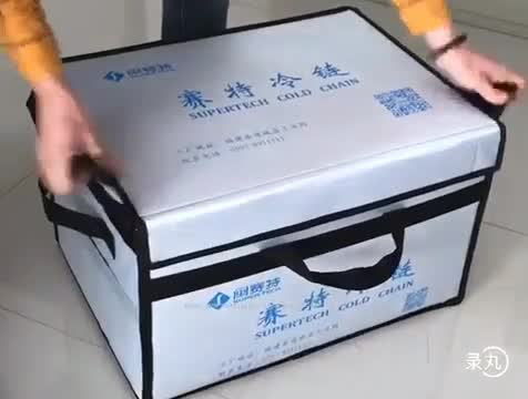 Eco-friendly Foldable Insulated Cooler Bag thumbnail image