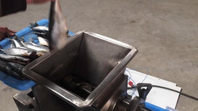 Fish meat deboning machine thumbnail image
