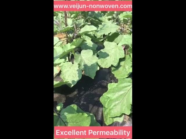Veijun weed barrier with excellent hydrophilic