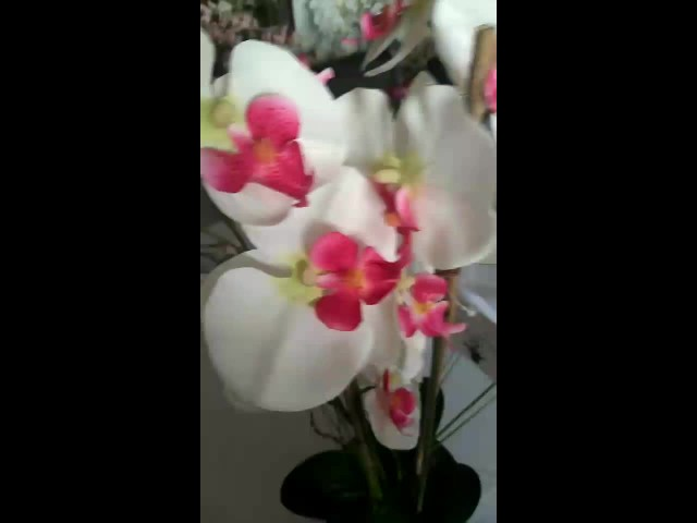 Artificial Orchid thumbnail image