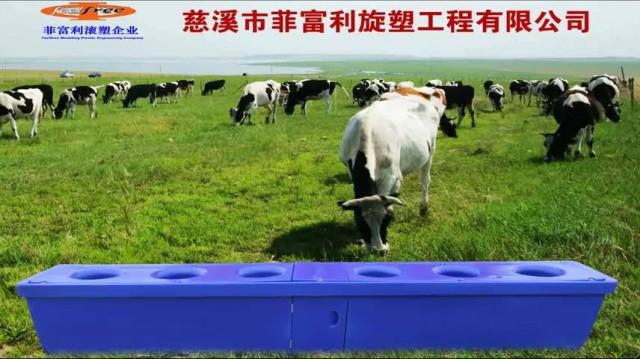 cattle trough