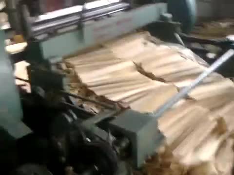 Wood peeling and cutting machine thumbnail image