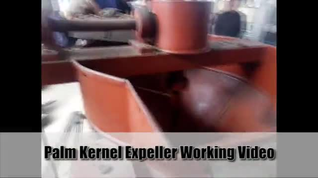 Palm kernel expeller machine running video thumbnail image