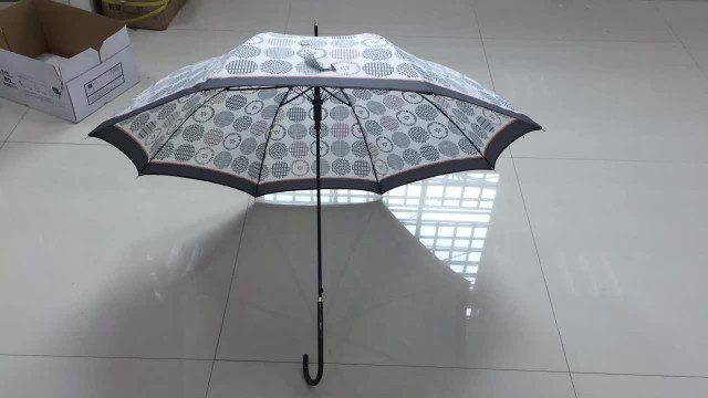 21.5 Inch 8 Ribs 8mm Straight Auto Umbrella