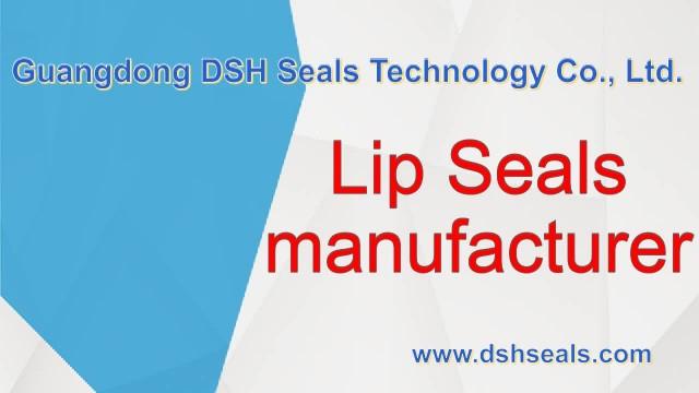 DSH Seals, seals manufacturer