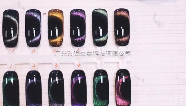 Nail Gel Polish from Professional Factory