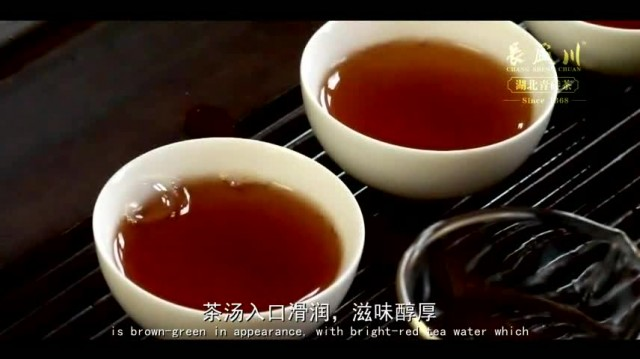 Welcome to China to taste our Tea