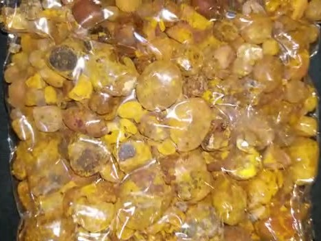 We Buy Ox Gallstone, WhatsApp +852 93649624 thumbnail image