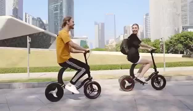 Car mate Folding Electric Bicycle